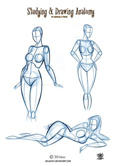 Pin up Cartoons Anatomy by celaoxxx