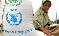 New stunting prevention initiative launched by government of Balochistan, WFP Un World Food Programme, Bollywood Funny, New College, Food Security, Supply Chain Management, Nobel Peace Prize, New Program, Blockchain Technology, Programming