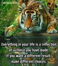 The choices you make dictate the life you lead.