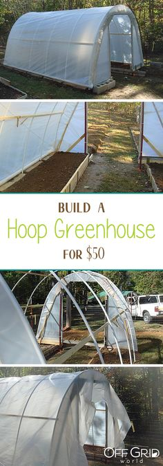 Build a hoop greenhouse like this one for only $50