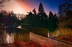 International Garden Photographer of the Year – in pictures