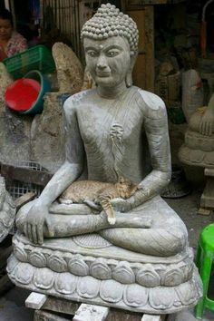 Buddha kitty in a Thai talisman/amulet shop