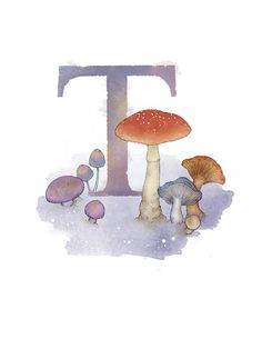 Art print of my own original mixed media illustration. Letter T Toadstool - Part of an alphabet/initials series featuring natural objects Alphabet Art, Animal Alphabet, Alphabet And Numbers, Nature Letters, Pretty Writing, Decoupage, Rose Frame, Letter T, Hand Painting Art