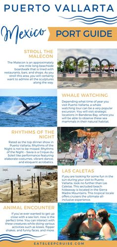 If you are planning to visit the Mexican Riviera, we have put together our list of the Top Things to Do in Puerto Vallarta, Mexico on a Cruise. Best Cruise, Cruise Port, Cruise Travel, Cruise Vacation, Vacations, Cruise Excursions, Cruise Destinations, Mexico Vacation, Mexico Travel