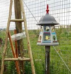 Sharon's lantern feeder in Stellenbosch