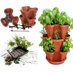 Indoor Medicinal Herb Garden Seed Starter Kit + Planter-terracotta