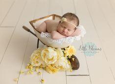 Newborn baby girl, wheelbarrow, yellow and white, yellow flowers, bow headband