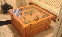 Homemade Coffee Table Snake Cage Snake Terrarium Reptile