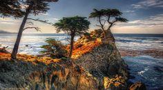 Tom Lussier Photography - Αναζήτηση Google