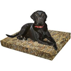 "Springs Creative True Timber Flooded Timber Dog Bed, 24""L x 36""W x 4""H, Brown"