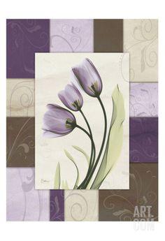 Wineberry Tulips • Albert Koetsier