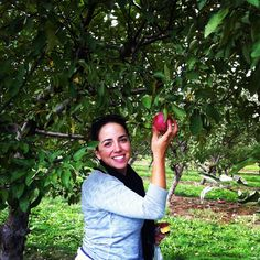 We love this idea of an apple-picking event with the other organizations on campus. Outdoor activities are a fun idea for informal recruitment or all-sorority mixers!