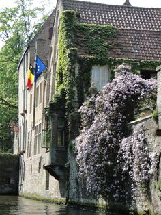 backside of a home along a canal in Bruges, Belgium #ivy