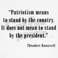 """""""Patriotism means to stand by the country. It does not mean to stand by the president."""" ~ Theodore Roosevelt"""