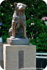 See you soon Hachiko! (statue of Hachiko at Shibuya Station, Japan.