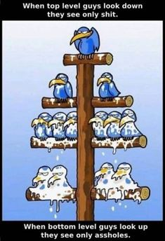 A flow chart explains levels in office Really Funny, Funny Cute, Hilarious, Stupid Funny Memes, Photo Humour, Plakat Design, Funny Comic Strips, Humor Grafico, Funny Animals