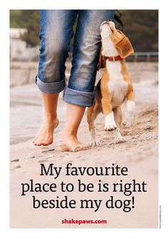 Mine especially, but in a pinch, literally any dog will do the trick.