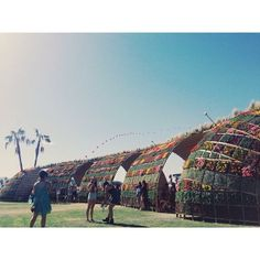 Goood morning, Coachella.