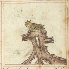 Bestiary Iran, Maragheh, or Morgan Library Morgan Library, Hobbit, Iran, Renaissance, 19th Century, Medieval, The Hobbit
