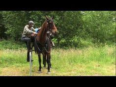 Wanderreiten von der Nordsee zur Ostsee HORSE TREKKING GERMANY - YouTube