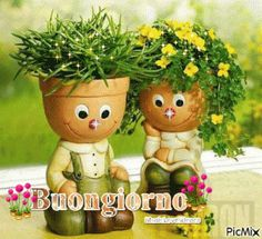 buongiorno (2)