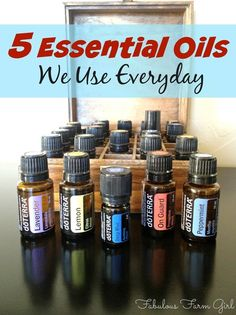 5 Essentail Oils We Use Everyday by FabulousFarmGirl. Everything you need to know about the EO's my family can't live without.