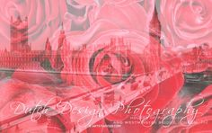 #doubleexposure http://melanierijkers.werkaandemuur.nl/index/132/nl/Houses-of-Parliament-and-Westminster-Bridge-London/view/103656… Fotokunst te koop #London Flowers & History #red #roses and Parliament House/Westminster Br. pic.twitter.com/HMEehC959T