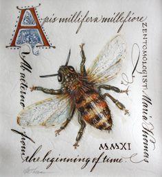 Zentangle: A Bee, See!