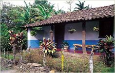 casa tipica Costa Rica, Pergola, Beautiful Places, Outdoor Structures, Country, Projects, Photography, House, Painting