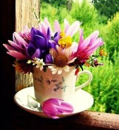 Tea:  Bright flowers in a teacup with saucer.  Ana Rosa.