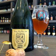 Wäls Brut - Episódio 135 #cerveja #degustacao #beer #tasting