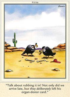 Best Ideas For Funny Cartoons Drawings Jokes Gary Larson Gary Larson Comics, Gary Larson Cartoons, Far Side Cartoons, Far Side Comics, Funny Cartoon Memes, Funny Comics, Funny Jokes, Cowboy Humor, The Far Side Gallery