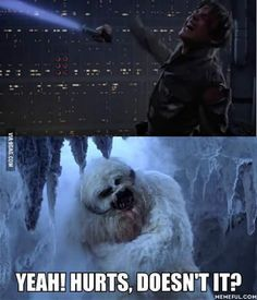 Because karma hurts!  Just a funny little Star Wars meme to brighten your day, featuring Luke Skywalker getting his hand cut off by Darth Vader's lightsaber.  Also comes with sassy commentary from the wampa (ice monster) he ran into on the planet Hoth, who thinks he's being a real baby about the whole thing.  Enjoy :)