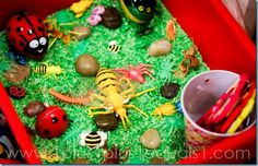 Bugs Sensory Bin (The Grouchy Ladybug by Eric Carle)