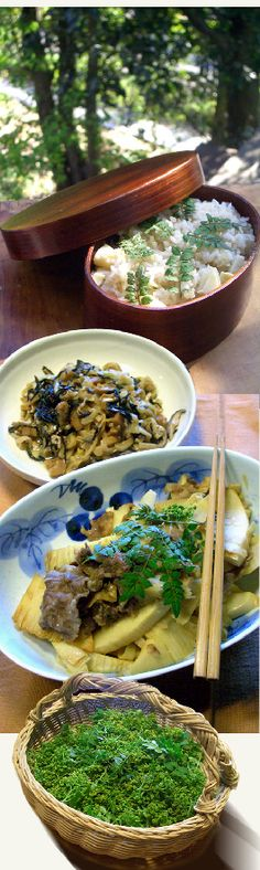 Bamboo shoot dishes, Kyoto, Japan 京のタケノコ