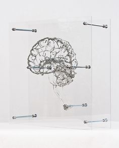 Anatomical sculptures by Federico Carbajal — galvanized wire, stainless steel and acrylic.