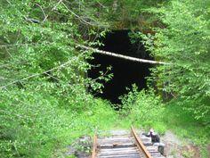 William Imholt uploaded this image to 'Facebook/Old Tillamook Railroad Hike 52513'.  See the album on Photobucket.