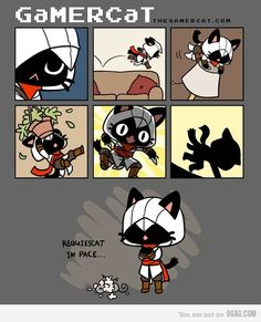 Gamer cat.