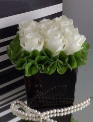 Fabiola Roses with Molucella in a Black Cube - white