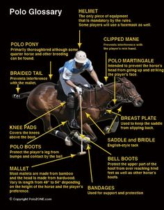 How to play equestrian polo - Google Search