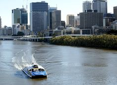 Ferry ride. In Brisbane, city cats are used for public transport and cost the same as travel by bus or train.