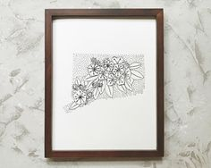 Connecticut + Mountain Laurel | State Flower Drawing Art Print