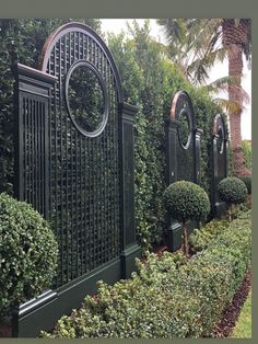 Wood Trellis, Garden Trellis, Garden Gates, Trellis Gate, Privacy Trellis, Trellis Panels, Privacy Screens, Garden Plants, Fence Design