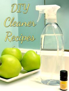 There are so many good cleaning recipes out there, but I would like to share a few that we use in our home. All-Purpose Cleaner 1 3/4 c Water 1 3/4 c Vinegar 1 dropper full of Grapefruit Seed Extract or several drops of Tea Tree Oil Optional: 1 tbs Dish Soap (a small squirt) …