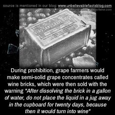 The More You Know, Did You Know, Unusual Facts, Wtf Fun Facts, Random Facts, Scary Facts, Strange Facts, Bizarre Facts, Unbelievable Facts