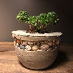 Concrete votive candle holder or succulent planter with shells from bear lake utah beach cottage farmhouse rustic room decor gifts for home by winterberrydesignco on Etsy https://www.etsy.com/listing/578238025/concrete-votive-candle-holder-or