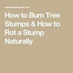 How to Burn Tree Stumps & How to Rot a Stump Naturally
