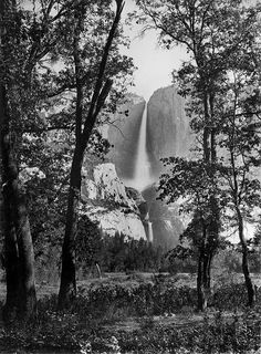Carlton Watkins sent his photos of Yosemite to President Abe Lincoln, in an effort to protect this wilderness. Make someone feel like they are in the moment with your photograph and they will help protect the wild. Edward Weston, History Of Photography, Art Photography, Landscape Photos, Landscape Photography, Yosemite National Park, National Parks, Fall Facts, Places In California
