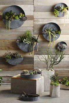 Não tem tempo ou esquece de regar as plantas: o terrário de parede pode ser a solução para você ter um verdinho bonito em casa....