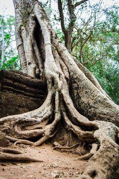 The Small Circuit At Angkor: A Detailed Look - Global Gal